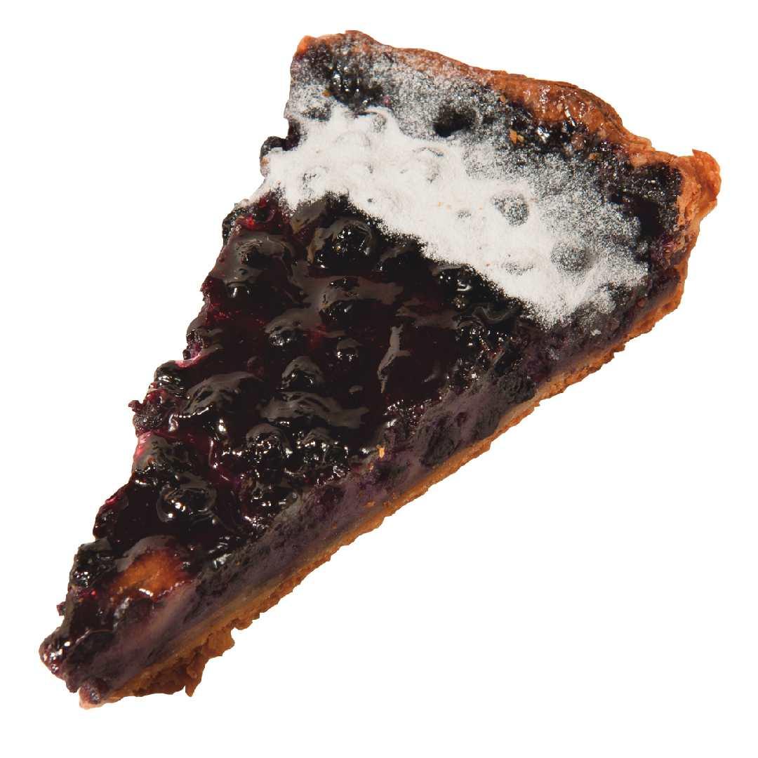 黃金藍莓塔 Blueberry Tart